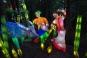 Cады Света в Ботаническом Саду / Jardins de lumière